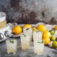 Lemonade Ankarasrum